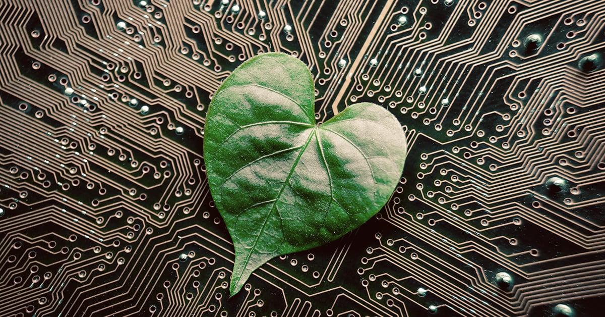 Bæredygtig digital transformation